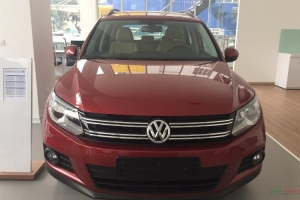 Volkswagen Tiguan	2.0 AT 2017